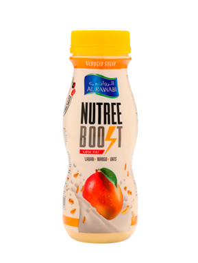 Nutree Boost Mango With Oats